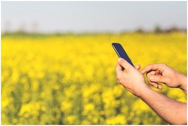 free mobile, orange, antennes mobiles