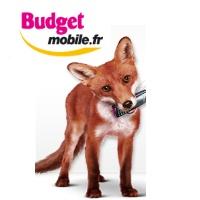Zoom sur les offres Budget Mobile