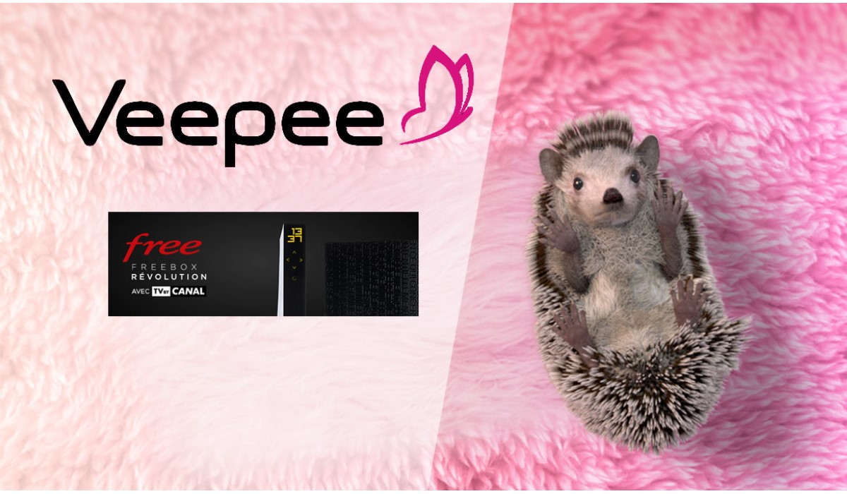 veepee freebox révolution avec TV by Canal